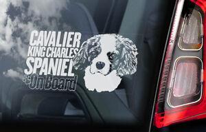 Cavalier-King-Charles-Spaniel-Auto-Finestrino-Adesivo-Cane-a-Bordo-Firmare