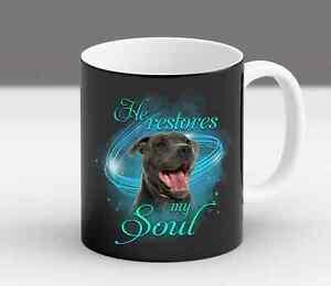 Funny-Pit-Bull-Owner-Fur-Mom-Dad-Gift-Coffee-Mug
