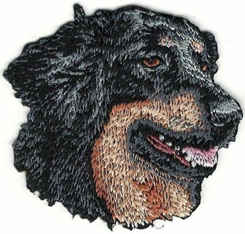"""2 /"""" x 5.7cm Hovawart Hund Rasse Bild auf der Suche Rechts Bestickt Patch"""