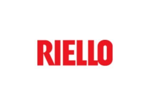 RIELLO O-RING ALBERINO ART 4363637 CALDAIA