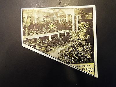 """""""a Glimpse Of The Flower Store"""" Partial Victorian Trade Card"""