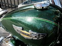 Harley Davidson Wing Tank Emblems Softail Deluxe Flstn Gold Chrome Rare Cvo