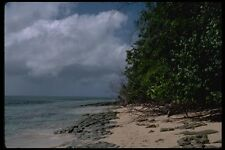 069030 Beach Green Island Queensland A4 Photo Print