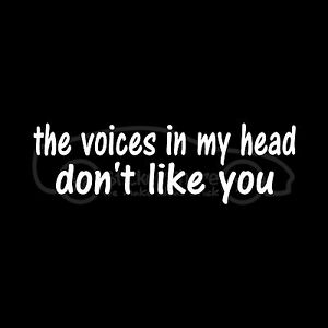 THE-VOICES-IN-MY-HEAD-DON-039-T-LIKE-YOU-Sticker-Funny-Hater-Vinyl-Decal-Car-Window