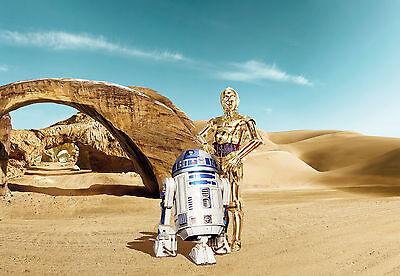 Star Wars Lost Droids Photo Wallpaper Wall Mural Reunion On Tatooine 368x254cm 4036834084844 Ebay