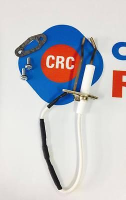 WohltäTig Elektrode D'zÜndung Ersatzteile Kessel Ariston Co:crc60000868-01 Ab Crc60000868 Schnelle Farbe Baugewerbe