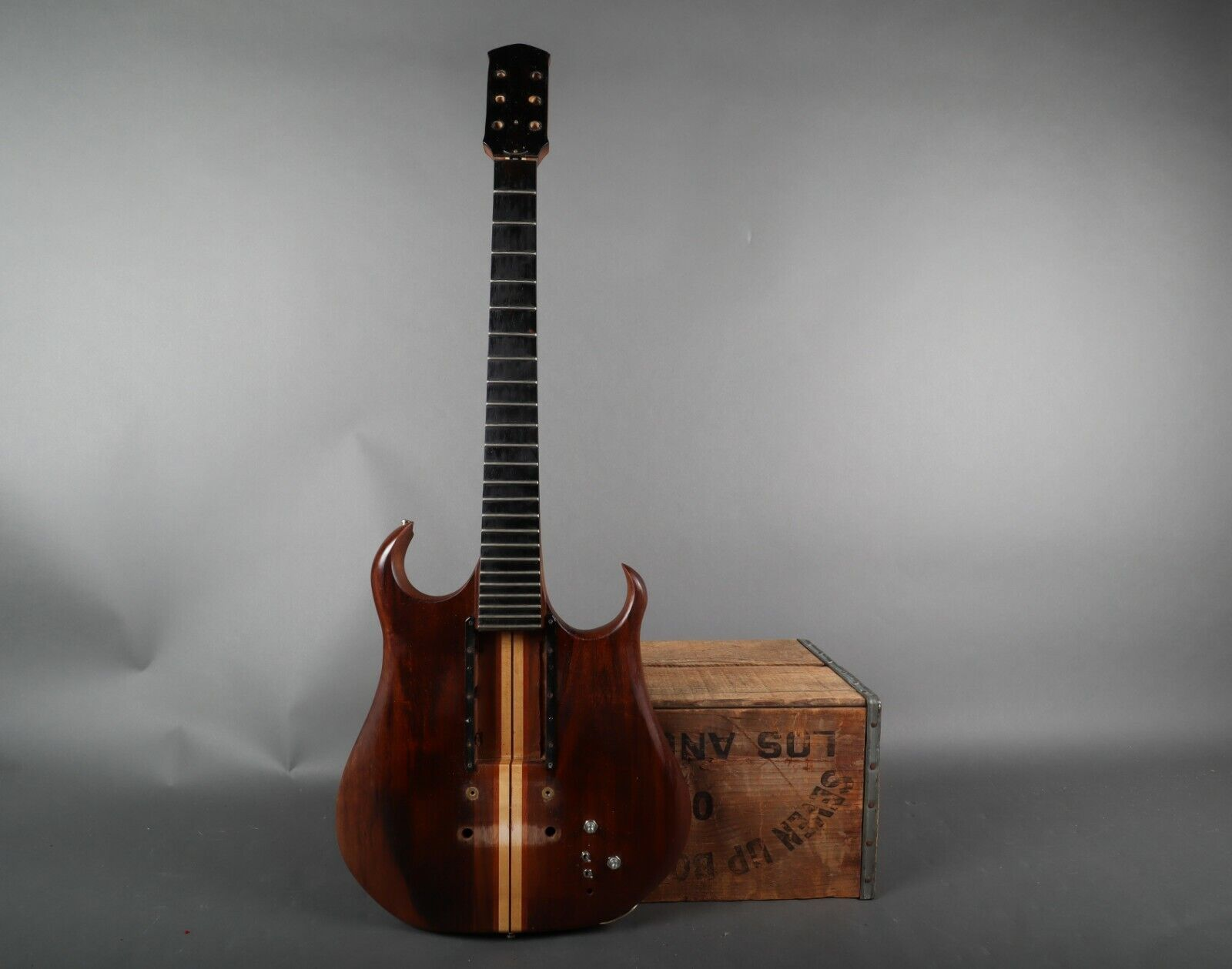 Unknown Maker Body Luthier Special Guitar Husk