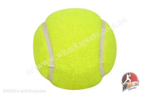 Vicky Hard and Light Tennis Cricket Ball