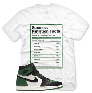 e73af9545737 New White SUCCESS FACTS T Shirt Jordan Retro 1 High OG Pine Green