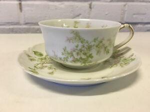 Antique Haviland & Co. Limoges Porcelain Cup & Saucer Pink & Green Flowers Dec