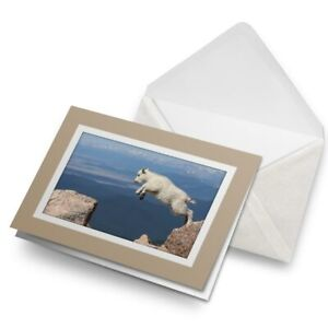 Greetings-Card-Biege-Jumping-Baby-Goat-Animal-14440