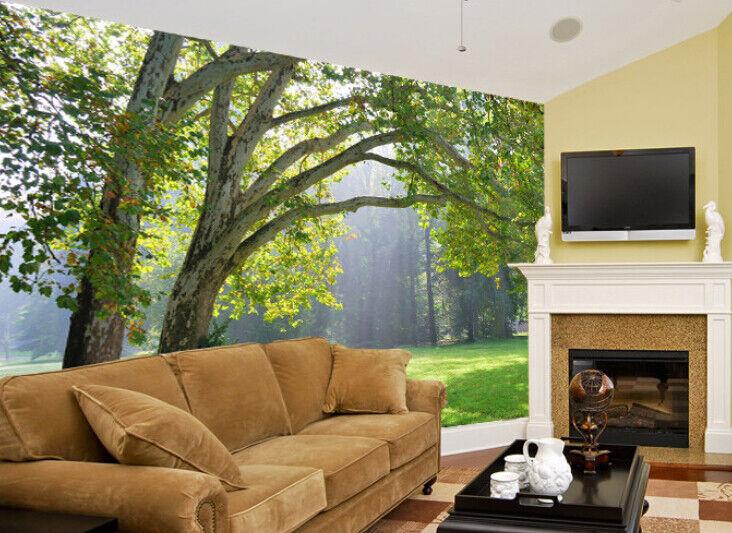 3D Sunlight  Woods 78 Wall Paper Murals Wall Print Wall Wallpaper Mural AU Kyra