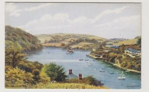 Cheshire postcard - Malpas on the Fall - ARQ No. 2322 (A2)