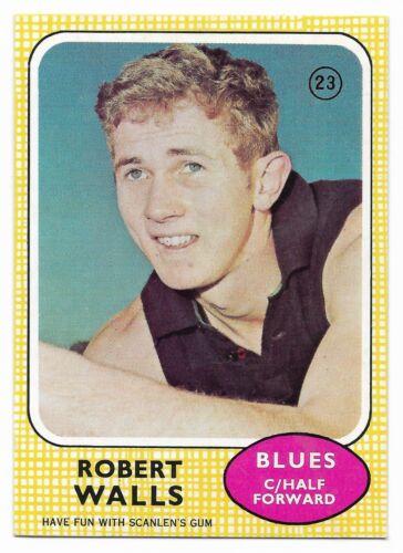 23 Robert WALLS Carlton  { MINT } 1970 Scanlens