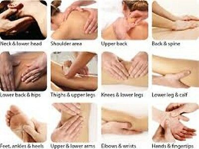 Learn How to Massage 4 DVD-R, Back & Neck, Anti Cellulite, Baby & Thai Massage