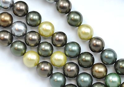 1 Str- Mixed Colour Dark Green Grey Bronze Round Sea Shell Pearls Beads