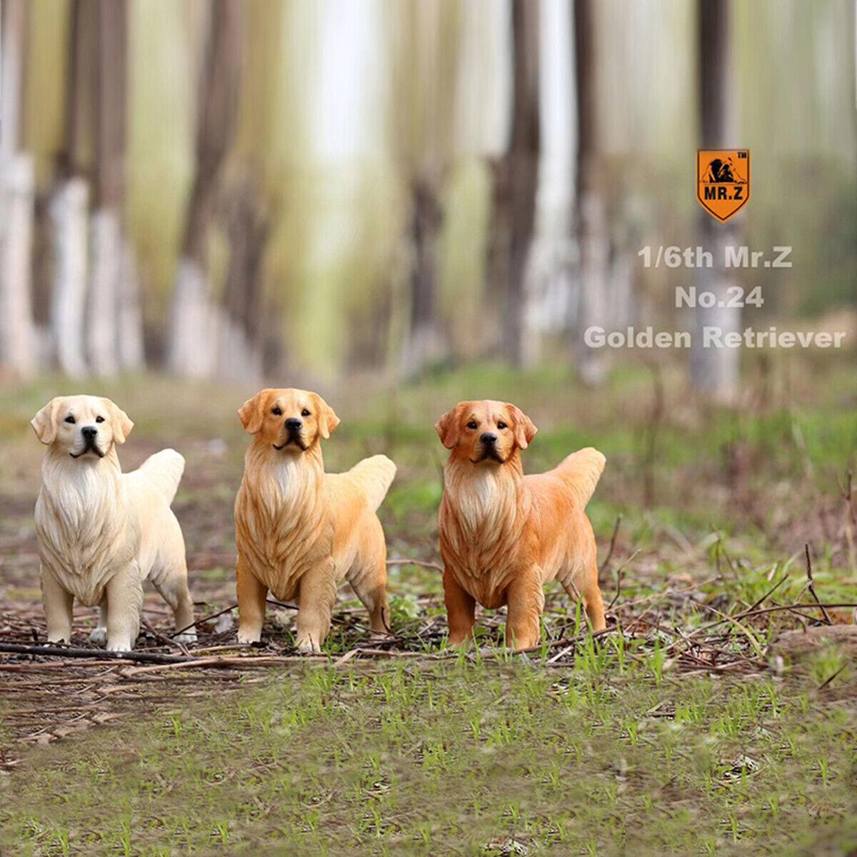 Mr.Z 1 6 oroen Retriever Loyal Dog Pet  cifra Animal Decor modellololo giocattolo Kid Gift  fino al 42% di sconto