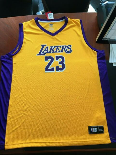 603df6b84d90 NBA Cool TX3 LeBron James 23 Los Angeles Lakers Fanatic Large Mens Jersey