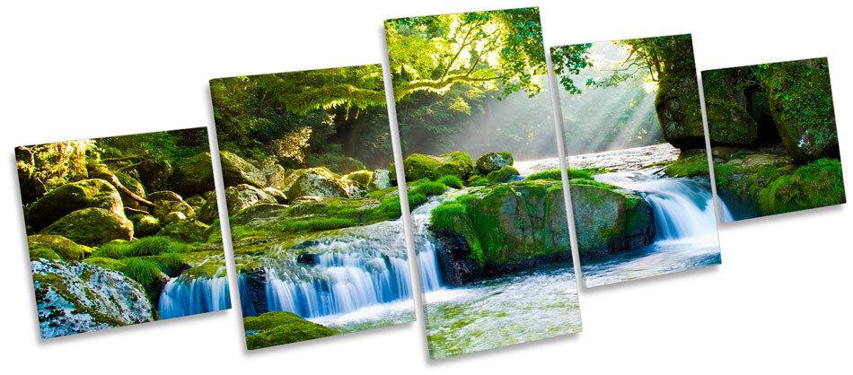 Forest River Landscape Sunlight MULTI CANVAS WALL ART Print Box Frame