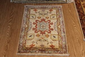 Details About 2 X 3 Handmade Persian Design Made Out Of Natural Wool Dyes Throw Rug