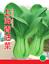 Vegetable-Garden-Retail-package thumbnail 141