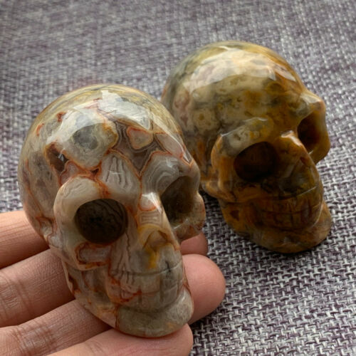 """TOP  2/"""" Natural Crazy agate quartz crystal skull Hand Carved Crystal Healing 1pc"""