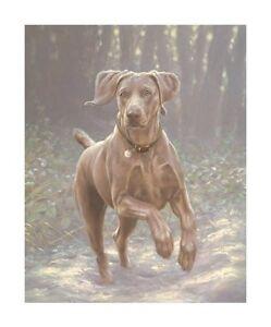 John-Silver-WINTER-WONDERLAND-Weimaraner-Weim-Gun-Dogs-Prints-Art-Snow-Xmas
