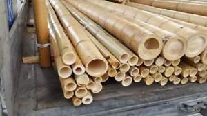 Canne bambù arredamento interni