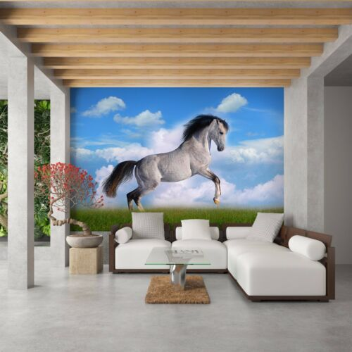 Tapete Vlies Fototapete Neu Design Natur Tiere Porträt vom Pferd horses