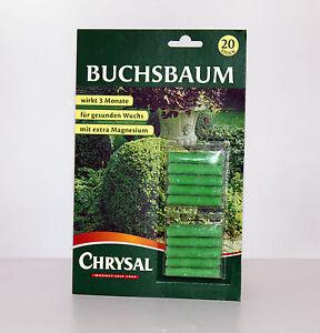 chrysal buchsbaum d ngest bchen d nger f r buchsb ume ebay