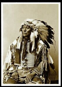 903-Postcard-HOLLOW-HORN-BEAR-Brule-Sioux-Chief-1900-Photo-John-Anderson-NEW