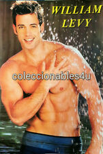 POSTER william levy  levi     11x16 triunfo del amor single ladies