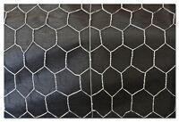 Hex Wire Galvanised Hexagon Mesh Netting Chicken Bird 900mm X 50 X 1.0 X 50m