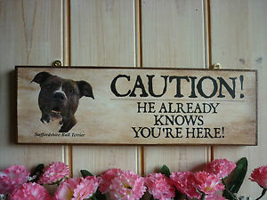 BEWARE-OF-THE-DOG-SIGN-STAFFORDSHIRE-BULL-TERRIER-PLAQUE-UNIQUE-SIGN-OWN-WORDING