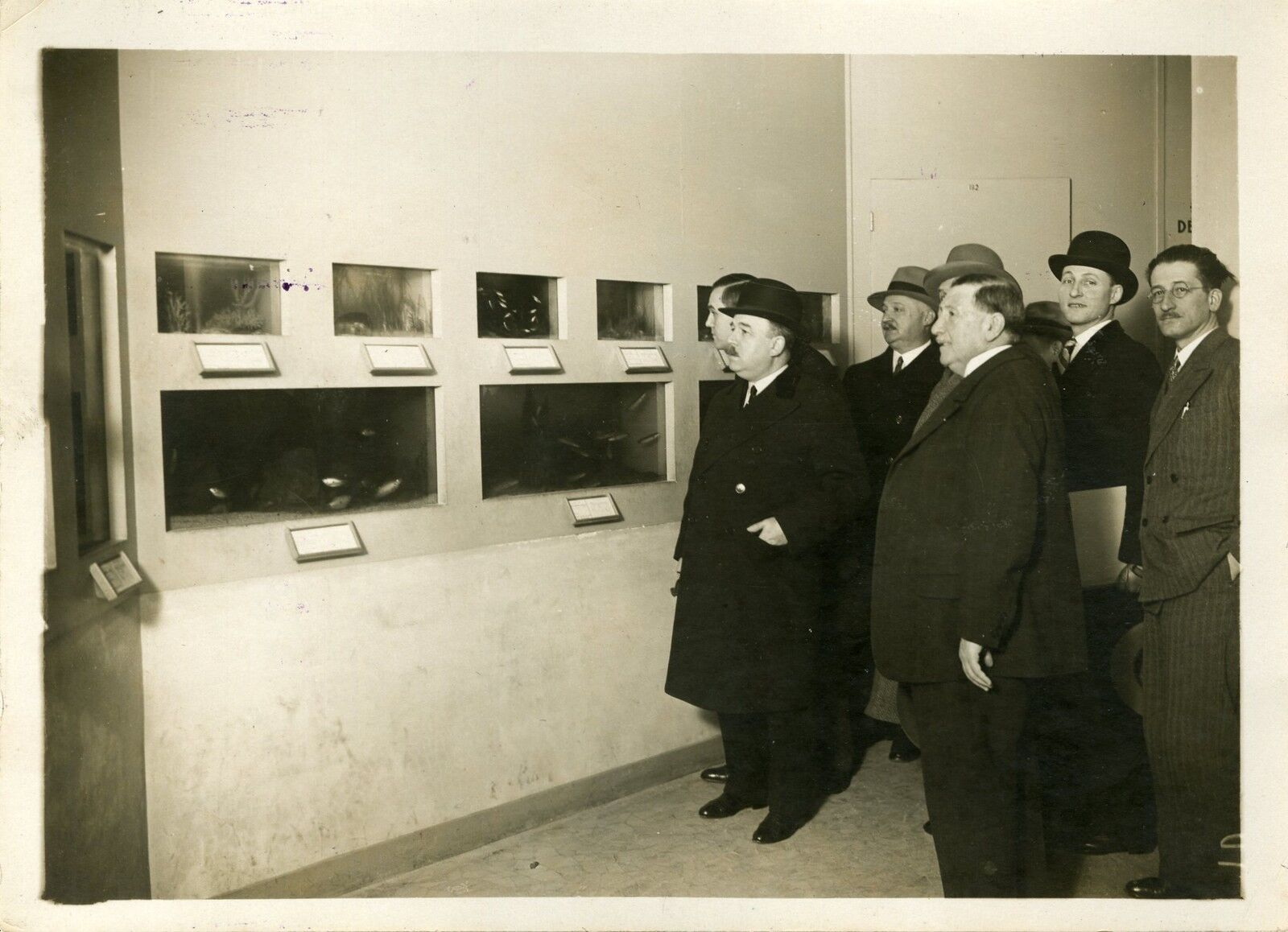 AQUARIUM au MUSEE PERMANENT des COLONIES 1931  Photo orig. G. DEVrot  Agce ROL
