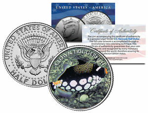 TRIGGERFISH-Fish-Series-JFK-Kennedy-Half-Dollar-U-S-Colorized-Coin
