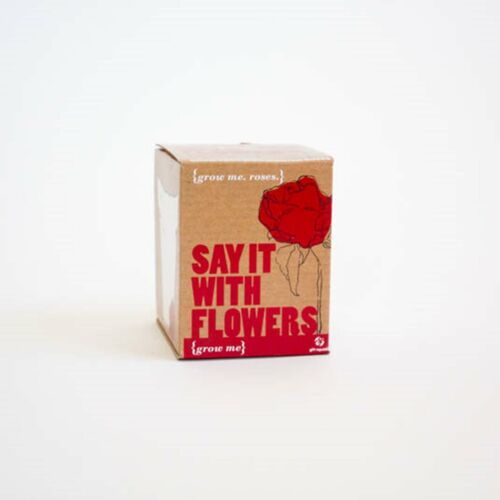 Say It With Flowers Grow Me Roses Grow Your Own Kit Gift Novelty