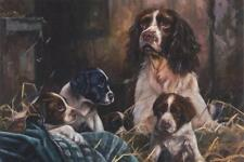 Springer Spaniel Dog Puppy Litter Breeder Painting Blank Birthday Greeting Card