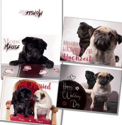 Verschiedene Hochzeitskarten von Möpsle - Mops - Pug