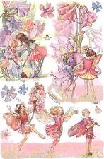 Chromo Le Suh Découpis Fée des fleurs 2042 Embossed Illustrations Flower Fairy