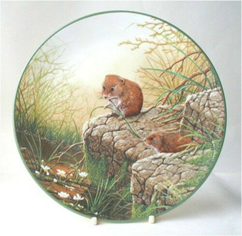 Royal Doulton Plate : PORTRAITS OF NATURE : Foraging Bank Voles : Certificate