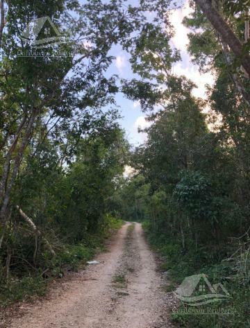 Terreno en Venta en Ruta de los Cenotes Puerto Morelos