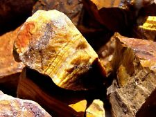 GOLD TIGEREYE Rock Rough - 2 1/2 LB Lot - Fine African Gem - FREE SHIPPING