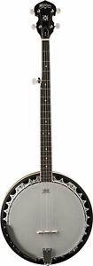 Fougueux Washburn Americana Série B9-wsh-a 5 String Banjo Naturel-afficher Le Titre D'origine