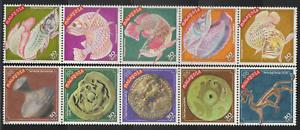 250-MALAYSIA-2000-CELEBRATE-THE-NEW-YEAR-OF-DRAGON-SET-FRESH-MNH