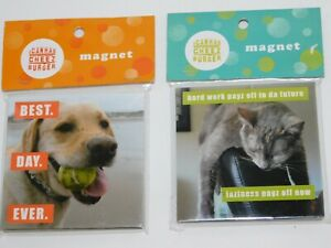 Dog-amp-Cat-Magnets-Puppy-Kitty-Rescue-Lovers-TWO