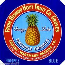 Citra Marion County Florida Pineapple Blue Orange Fruit Crate Label Art Print
