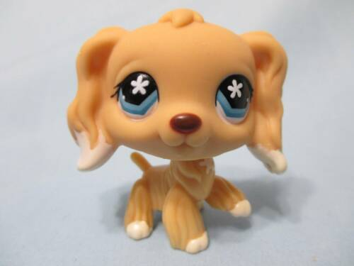 LITTLEST PET SHOP #748 CREAM WHITE COCKER SPANIEL FLOWER EYES 100% Authentic