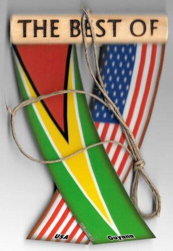 Rear view mirror car flags Guyana and USA unity flagz for inside the car