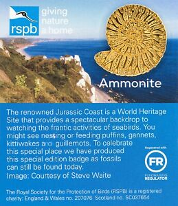 RSPB-Pin-Badge-Ammonite-Jurassic-Coast-01418